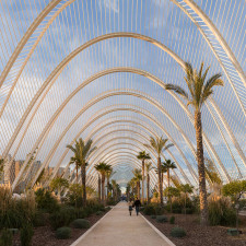 An ultrawide angle panoramic view along the inside of L'Umbracle in the Ciutat de les Arts i les Ciències in Valencia, Spain - Invest Offshore