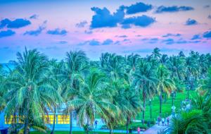 South Beach Miami, Florida - sunset palm trees