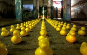 legal framework - ducks in a row