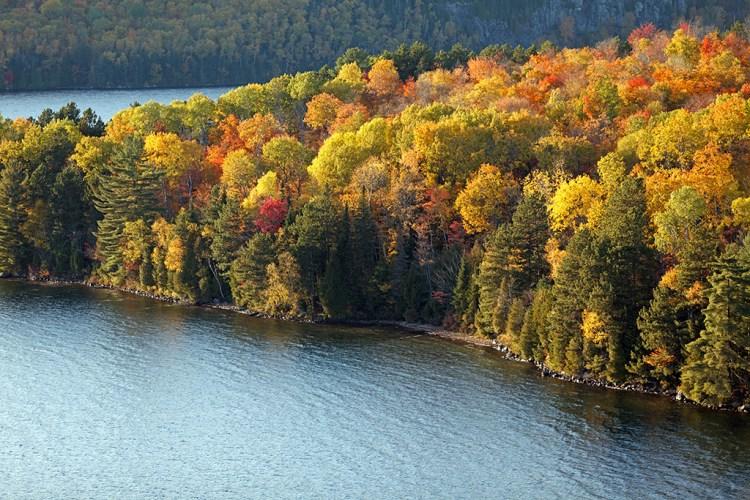 Lake Sacacomie, Canadian Waterfront