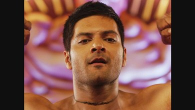 Photo of Amazon Prime Mirzapur Season 2 Release Date is Delayed due to Ali Fazal