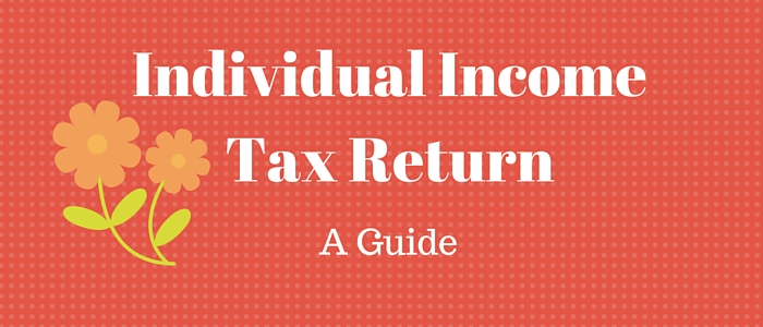 Individual Income Tax Return : A Guide