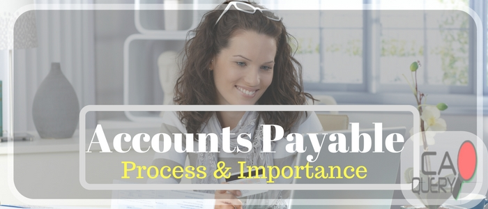 Accounts Payable Meaning and Contents: A Guide