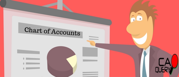 What is chart of Accounts ? A Detailed Analysis