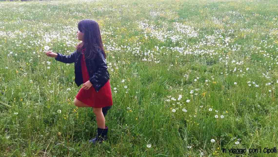 Ponti di Primavera