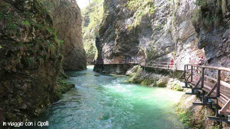 cosa vedere in Slovenia Gola di Vintgar