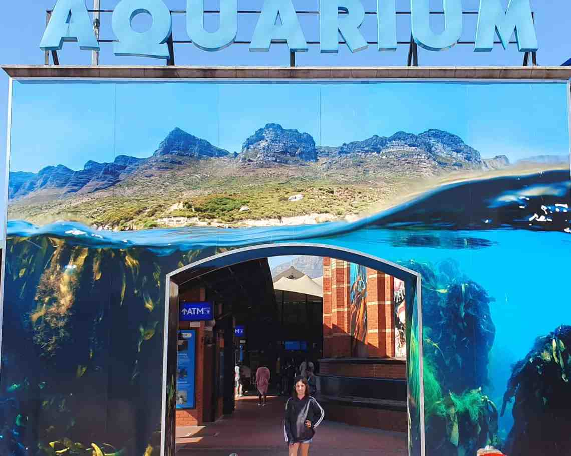 acquariocapetown