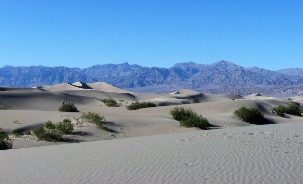 Tour dei Parchi, Mesquite Flat Sand Dunes (Death Valley, Stati Uniti)