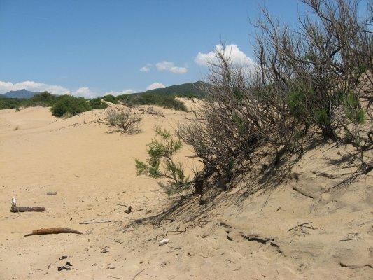 Viaggio in Sardegna, le dune di sabbia di Piscinas (Italia)