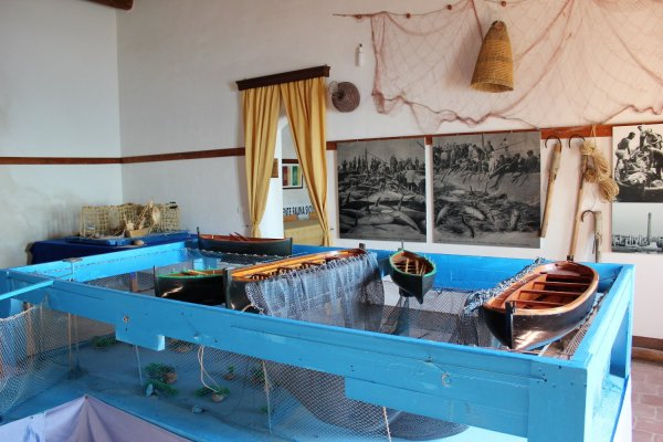 Viaggio in Sicilia, Ecomuseo nel Centro Visitatori (Riserva di Vendicari)
