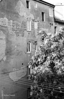 Edifici Bratislava