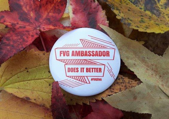 Ambassador Turismo FVG