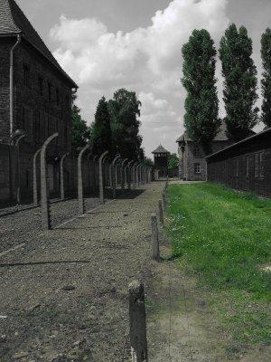 Campo concentramento Auschwitz