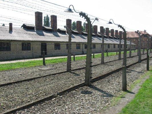 Auschwitz guida