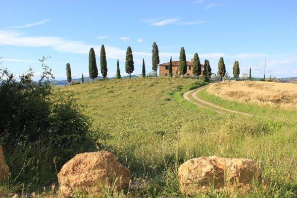 I Cipressini a Pienza in Toscana