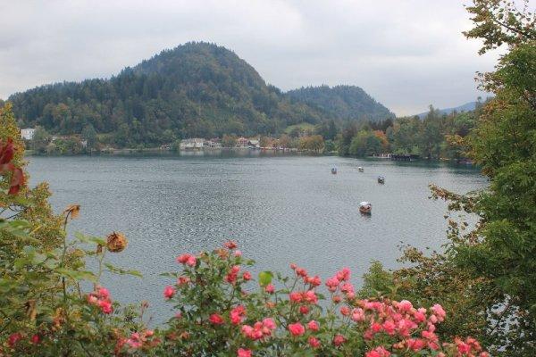 Panorama lago Bled