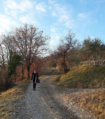 Sentiero Vigne Alte