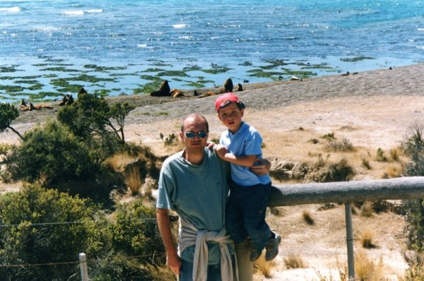 Leoni marini Peninsula Valdés Patagonia