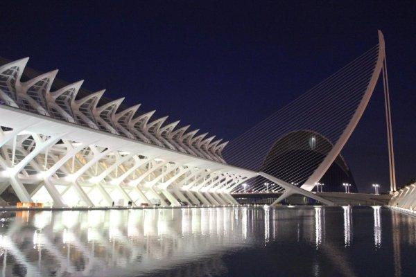 Vista notturna del Museo de las Ciencias Príncipe Felipe di Valencia