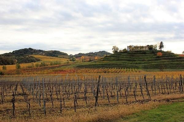 Paesaggio autunno Collio Friulano