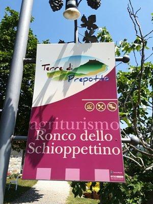 Agriturismo Ronco dello Schioppettino località Brischis