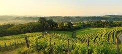 Paesaggio Colli Orientali del Friuli tramonto