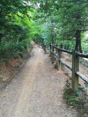 Il sentiero della Vigne Alte nei pressi del maneggio La Subida