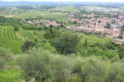 Panorama di Cormons dal Monte Quarin