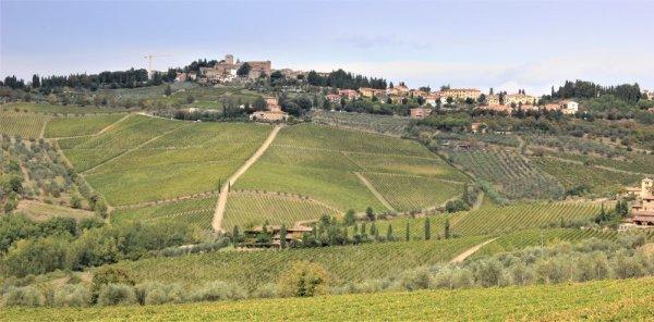 Panorama di Panzano in Chianti dalla via Chiantigiana