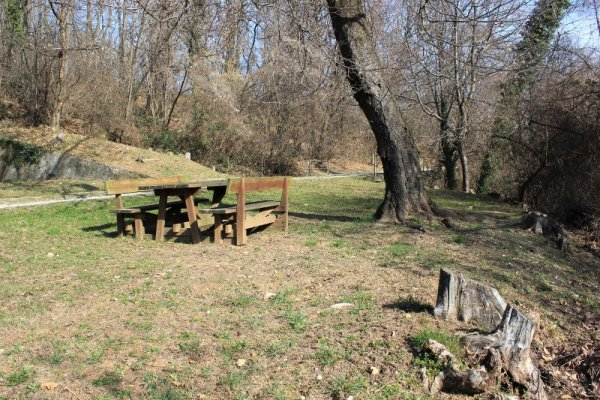 Tavolo da pic-nic nel Bosco Plessiva