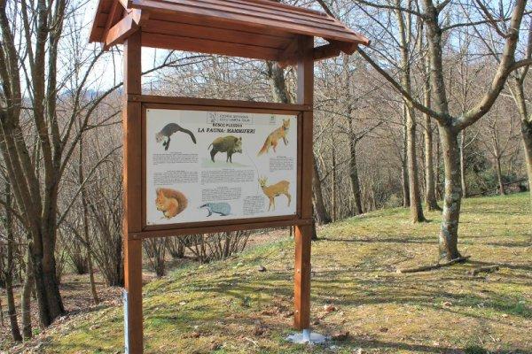 Cartello didattico sulla fauna presente nel Bosco di Plessiva