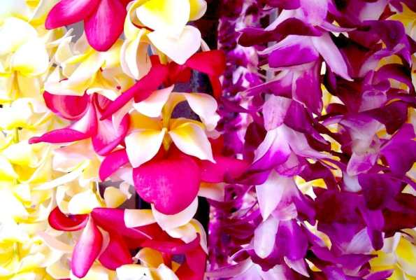 It's Not a Honeymoon Until You Get Lei'd (in Hawaii)