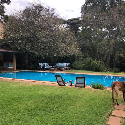 Hotel Review: Karen Gables, Nairobi