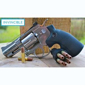 Dan Wesson 2.5″ BB CO2 Air Revolver silver
