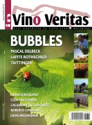 IVV-167-NL-cover