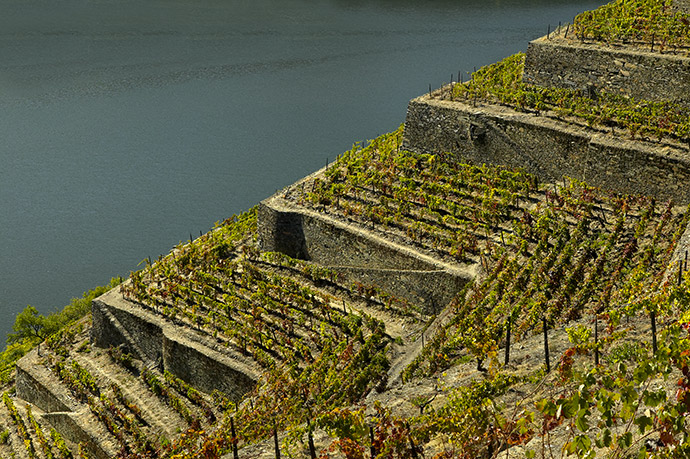 QUINTA-DE-LA-ROSA-Vale-do-Inferno-with-Douro-behind
