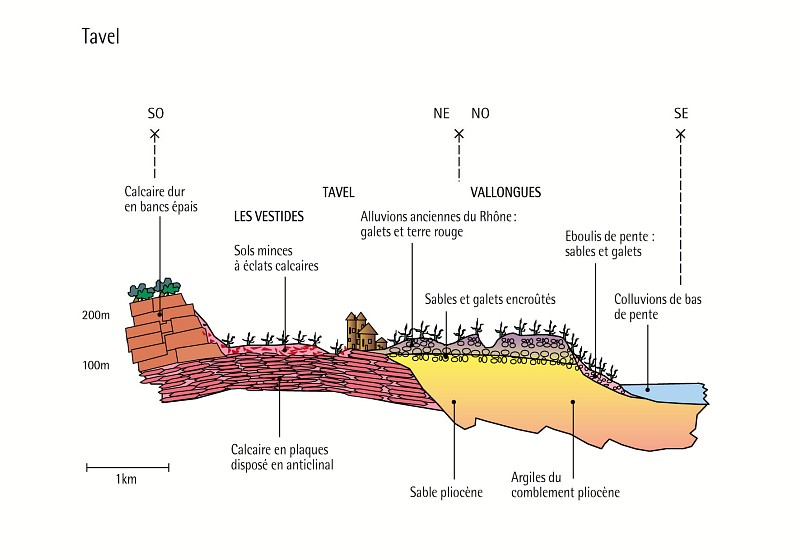 Coupe geologique (Tavel)     /     Geological profile (Tavel)