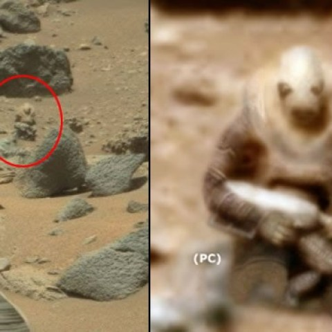 alien-shape-in-mars