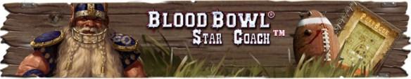 banner_forumbbstar
