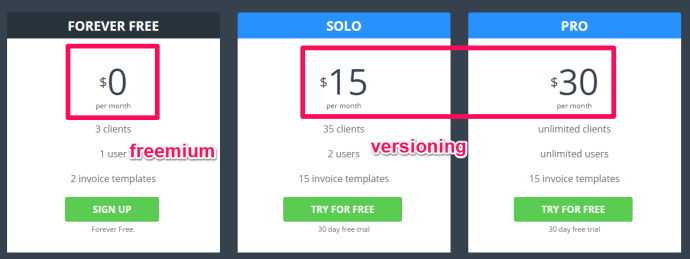 At InvoiceBerry we also offer a freemium/versioning pricing to provide more options for our customers