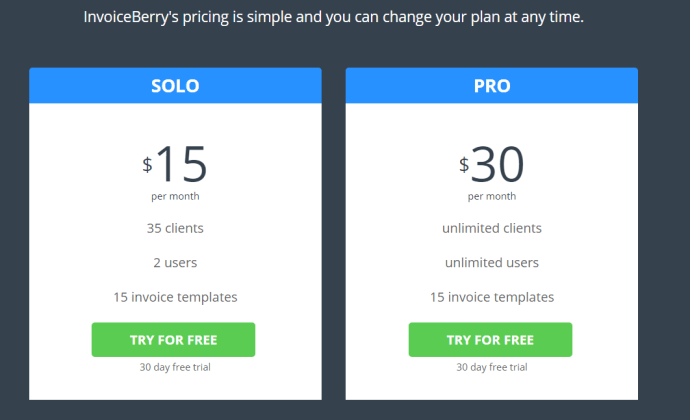 InvoiceBerry-Finance-Pricing-Strategy