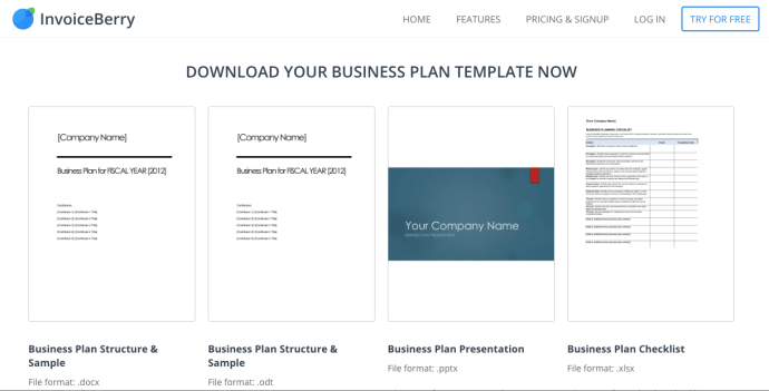 InvoiceBerry-Business-Plan-Template-Screenshot