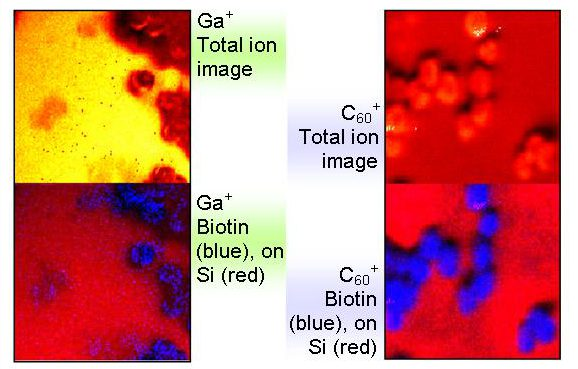SIMS images of Biotin-Sasrin linker- copoly (styrene-1% DVB) resins acquired with Ga+ and C60+