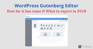 WordPress 5.0 Gutenberg callout