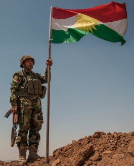 Peshmerga forces in Mosul.