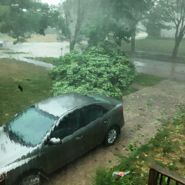 PHOTO GALLERY: Widespread Storm Damage Across Central Iowa 7