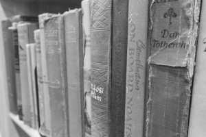 books-1428423_1920