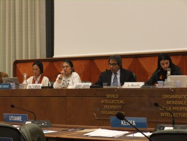 United Nations Special Rapporteur on the Rights of Indigenous People