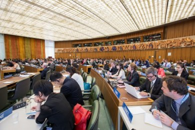 WIPO IGC Meeting