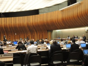 World Health Assembly Committee B
